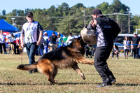 Working Dog Class - Male LSH
